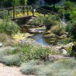 jardin_mediterraneo