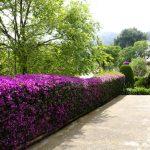 jardineria_barcelona