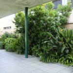 mantenimiento_jardin